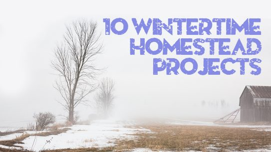 Home Garden Hacks, winter, farm