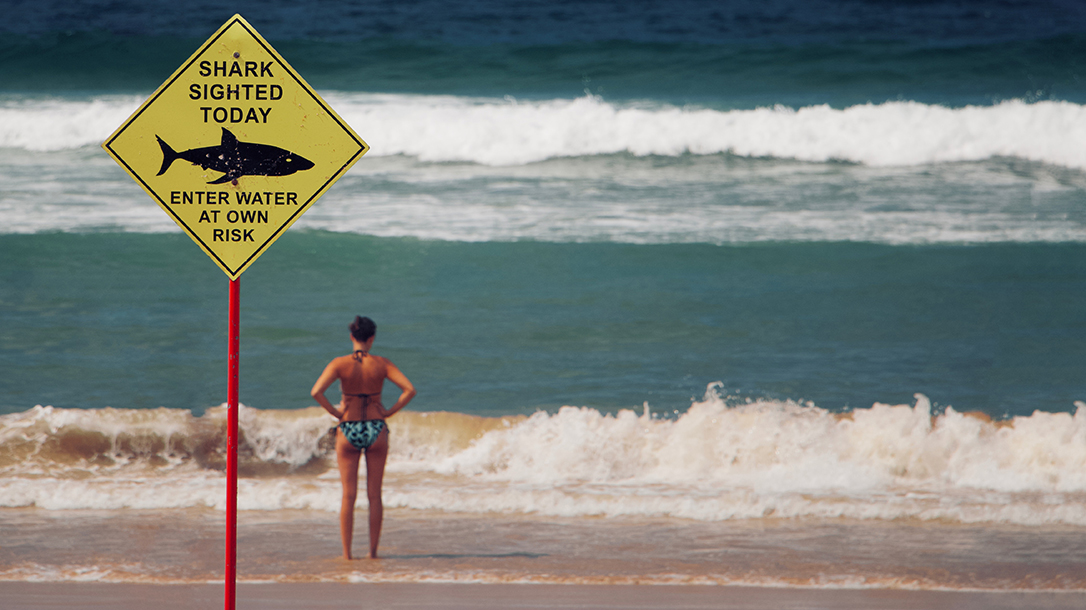 beach, shark attack sign, waves, ocean