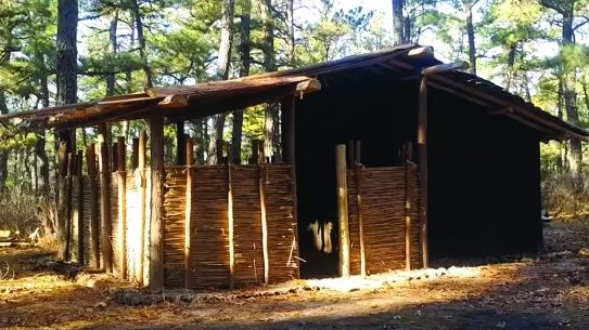 Survival cabin, forest