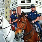 Mounted officers patrol tourist areas and the city center on horseback. The unique perspective of an officer on horseback allows them to deter and detect street crime.