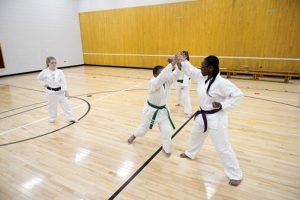 Central Michigan Karate
