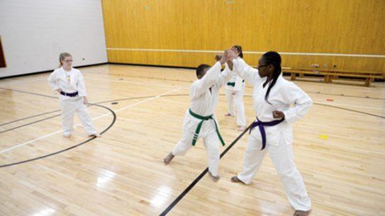 Central Michigan Karate