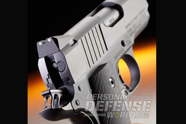 Para Executive Carry 1911 .45 ACP | Rear Sight