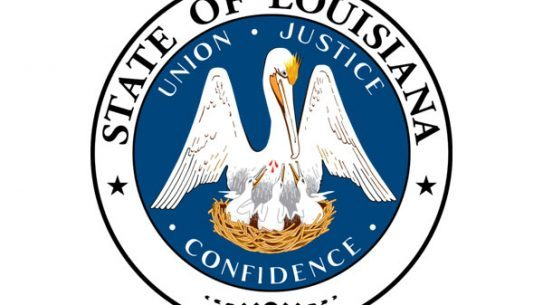 Several new pro-gun laws have gone into effect in Louisiana.