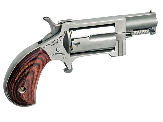 snub-nose revolver, revolvers, snub-nose revolvers, revolver, NAA Sidewinder