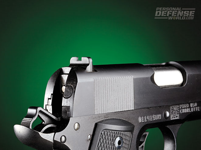 "The extended beavertail helps prevent slide ""bite."" Also note the rear sight."