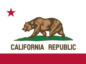 first amendment, california, california gun, california gun dealers