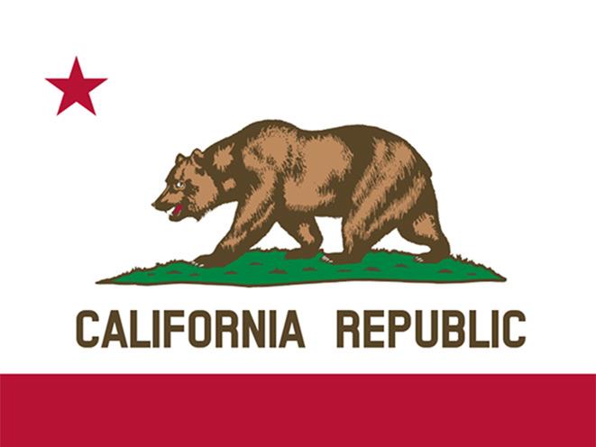 first amendment, california, california gun, california gun dealers