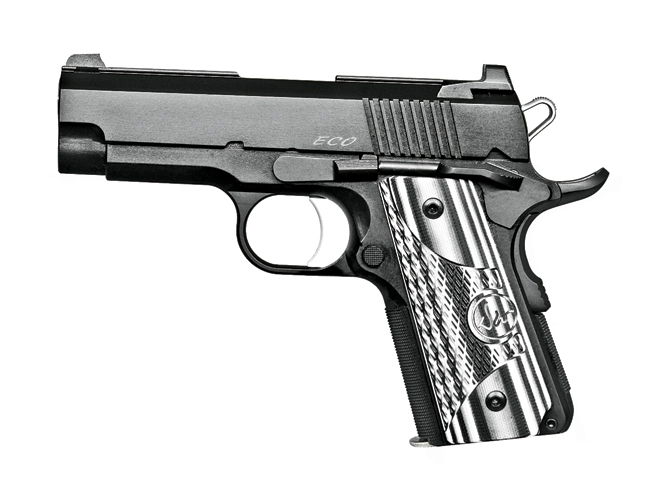 autopistols, autopistol, pistol, pistols, Dan Wesson ECO
