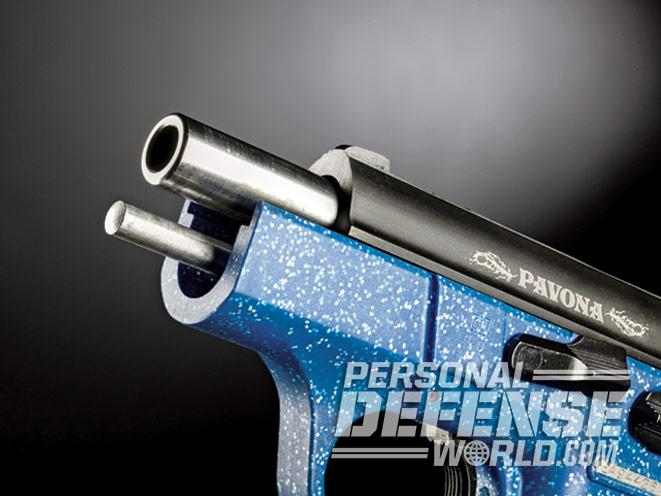 Gun Review: EAA Witness Pavona