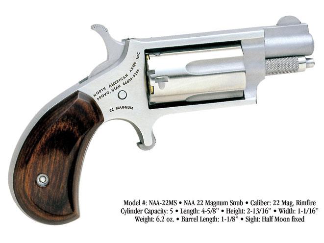.22 WMR, .22 magnum, .22 WMR load, revolver