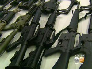 los angeles city council, l.a. city council, gun magazines l.a. city council