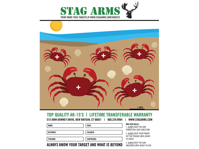 Stag Arms, Stag Arms target, Stag Arms printable target, stag arms crabs on the beach