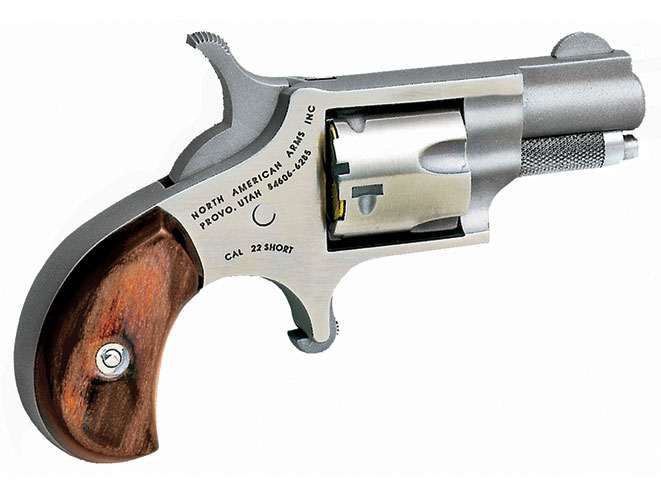 derringer, derringers, mini-revolver, mini-revolvers, revolver, revolvers, concealed carry derringer, concealed carry derringers, concealed carry revolver, concealed carry revolvers, NAA .22 SHORT