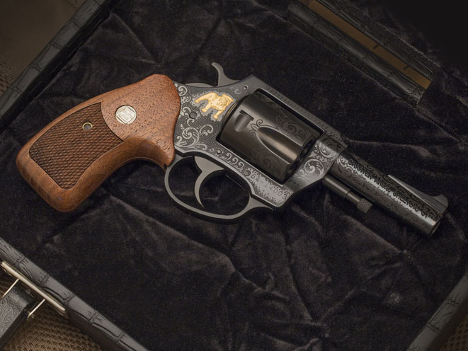 charter arms, charter arms bulldog, 50th anniversary bulldog revolver, bulldog revolver, 50th anniversary bulldog, charter arms bulldog beauty, 50th anniversary bulldog gun case