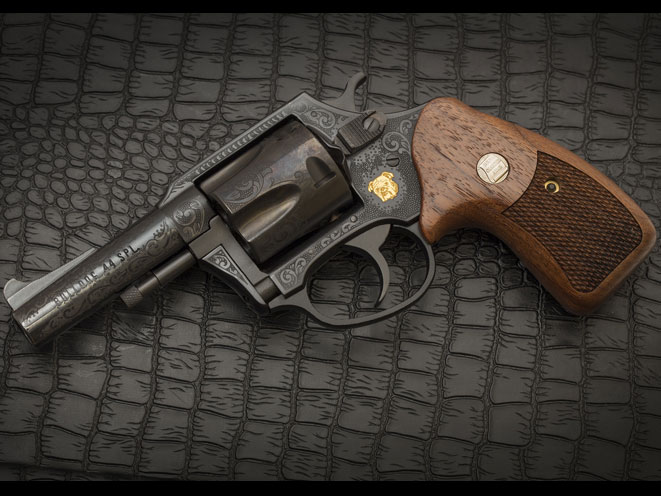 charter arms, charter arms bulldog, 50th anniversary bulldog revolver, bulldog revolver, 50th anniversary bulldog, charter arms bulldog beauty, 50th anniversary bulldog guns