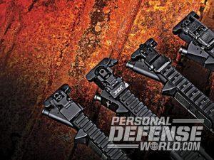 sight, sights, iron sight, iron sights, backup iron sight, backup iron sights