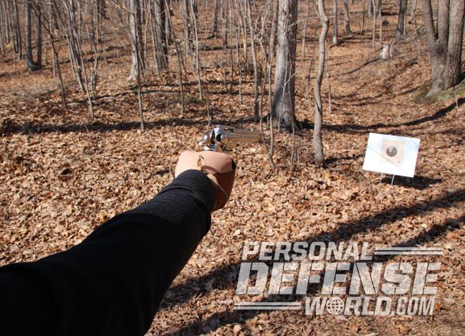 airgun, airgun range, airguns, airgun training, target training