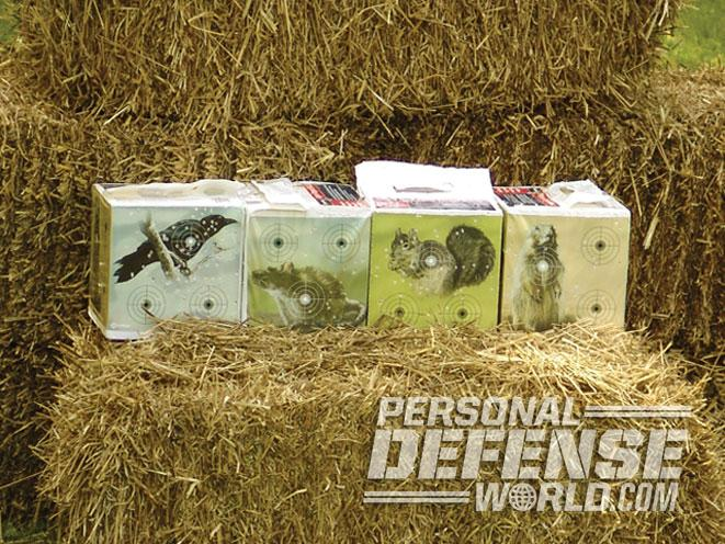 airgun, airgun range, airguns, airgun training, crosman target blocks