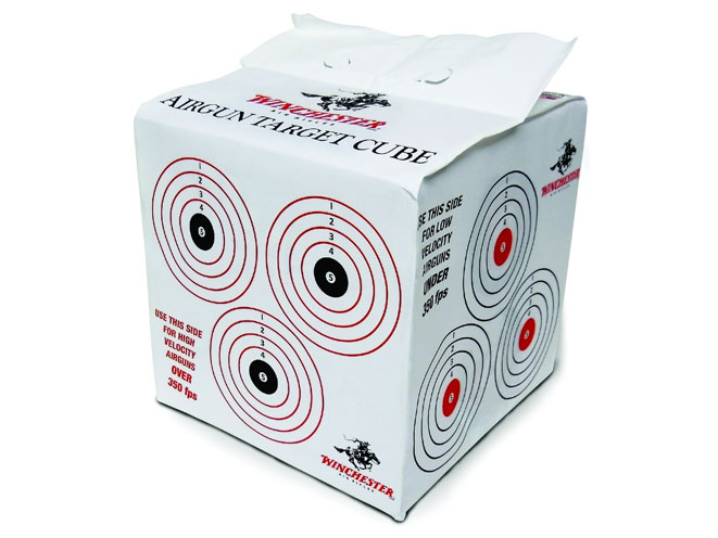 airgun, airgun range, airguns, airgun training, target training, daisy winchester target