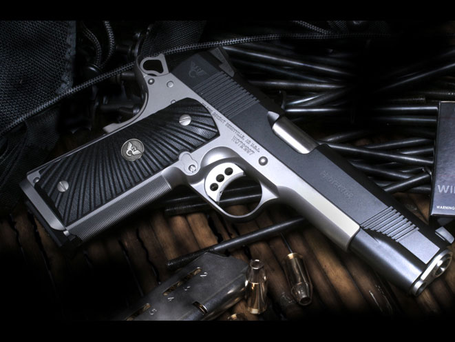 autopistol, autopistols, pistol, pistols, concealed carry pistol, pocket pistol, WILSON COMBAT PROTECTOR