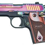 pistol, pistols, designer pistol, designer gun, designer guns, Sig Sauer P238 Rainbow