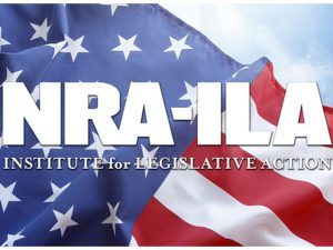nra, nra-ila, 4th circuit court