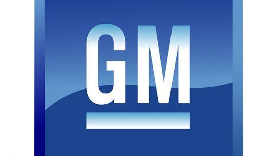 gm, general motors, general motors stabbing