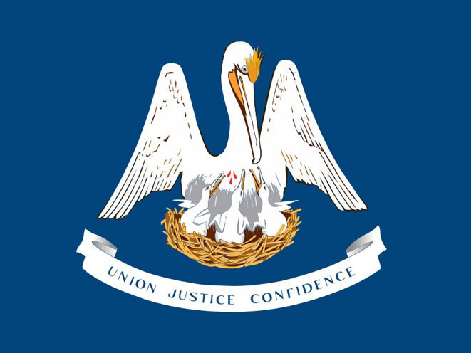 concealed carry, concealed carry gun, concealed carry gun law, concealed carry gun laws, Louisiana concealed carry