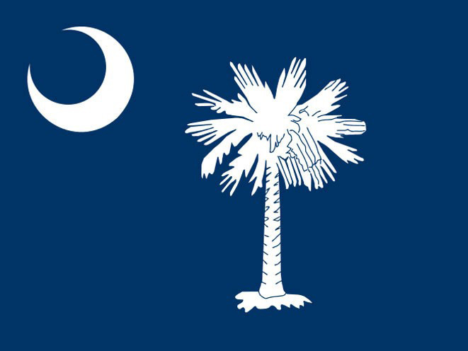 concealed carry, concealed carry gun, concealed carry gun law, concealed carry gun laws, South Carolina concealed carry