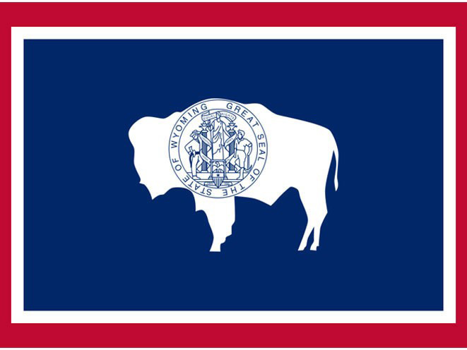 concealed carry, concealed carry gun, concealed carry gun law, concealed carry gun laws, Wyoming concealed carry