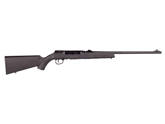 savage arms a22 in 22 lr