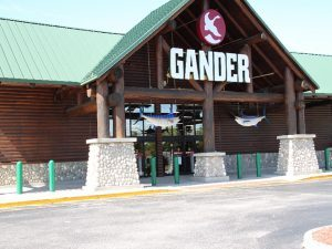 gander mountain bankrupt