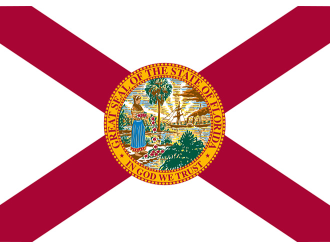 florida concealed carry laws