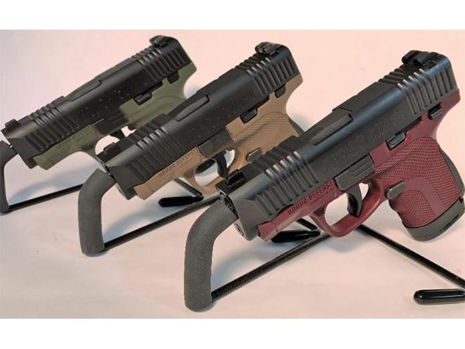Honor Defense Honor Guard pistols