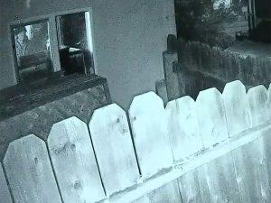 Armed homeowner brentwood california