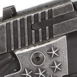 Sig Sauer P938 We The People pistol slide