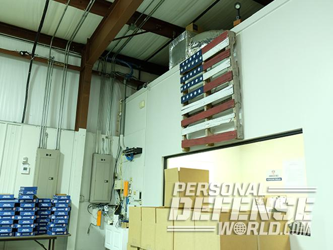 Honor Defense Honor Guard FIST pistol american flag