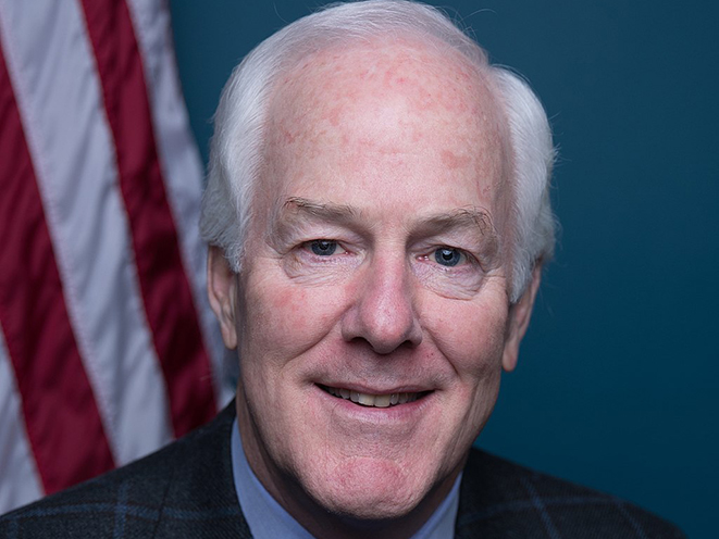 john cornyn gun background check
