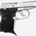 naa guardian handgun right profile