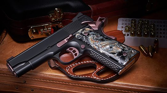 nighthawk ladyhawk 2.0 pistol