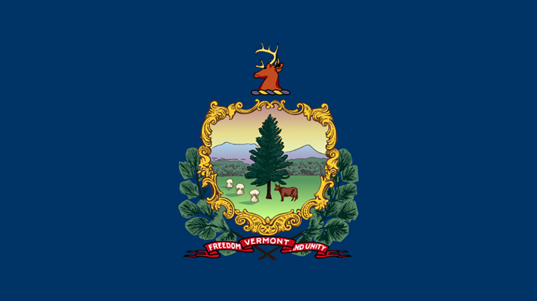 vermont gun bill flag