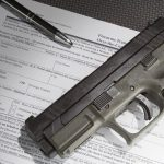 nics background checks application