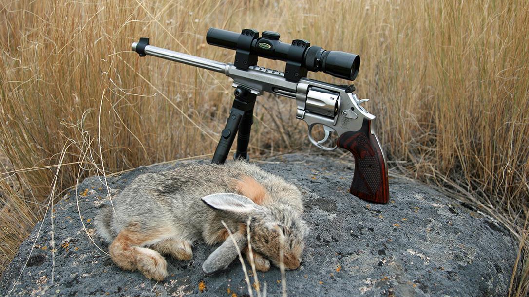 smith wesson model 647 varminter revolver rabbit