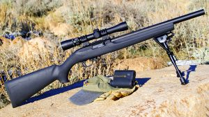 Must-Have Guns Remington 10/22 Rifle