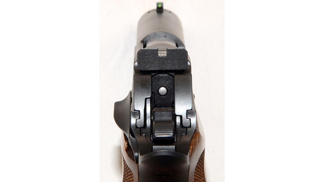Sig P210 Target pistol sights
