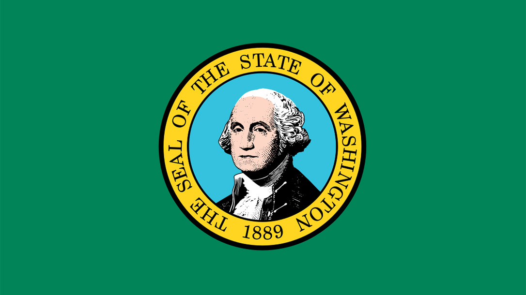 washington state flag paul allen