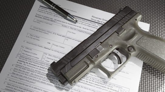 NICS Review Act, fbi nics background checks gun
