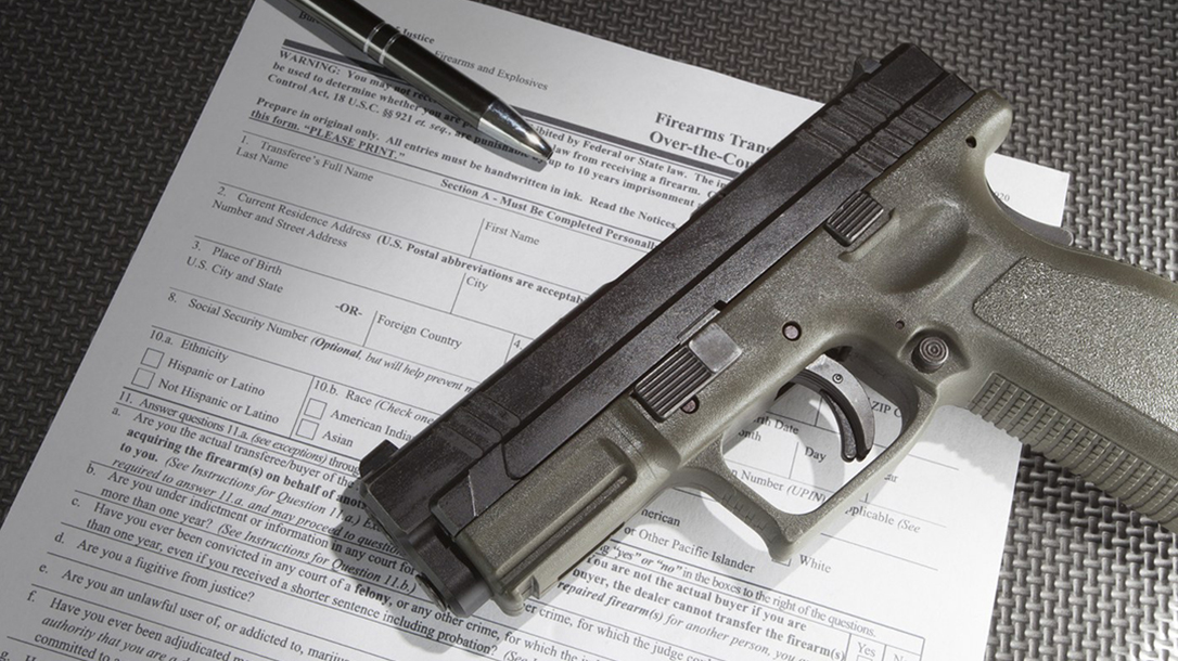fbi nics background checks gun