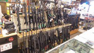 small arms survey gun shop
